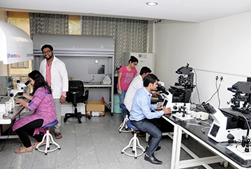Our IVF Lab